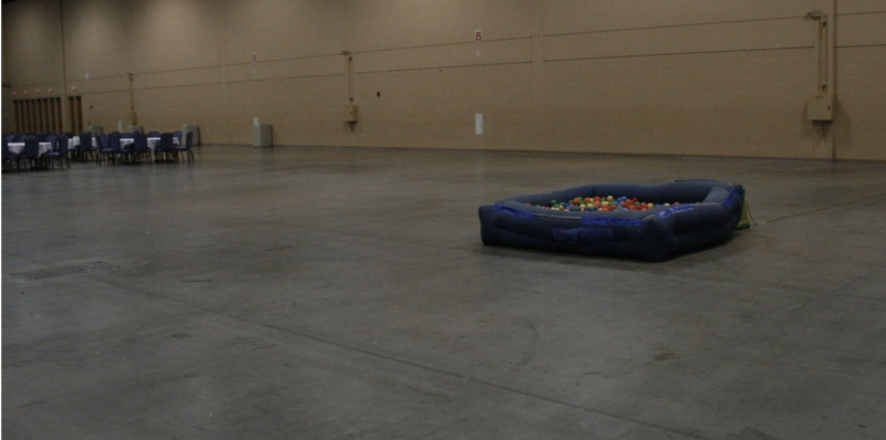"""""""The ball pit which became the meme of the year. It was a kiddie pool with balls."""""""